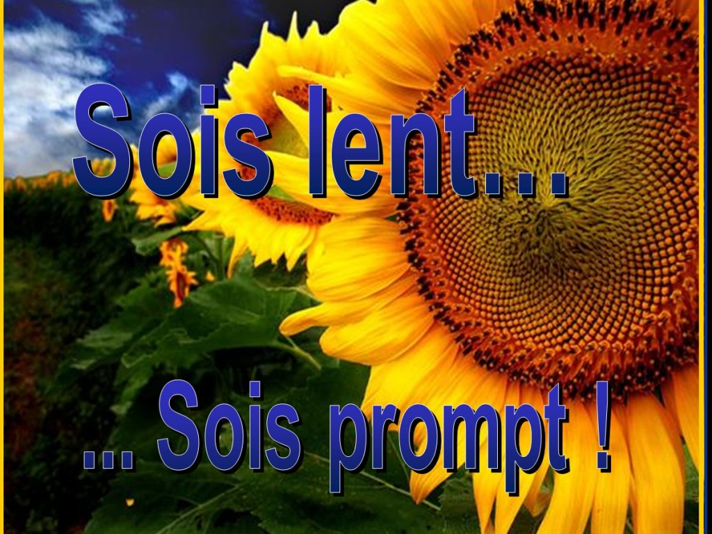 Sois lent… Sois prompt [French: Be Slow… Be Quick!]