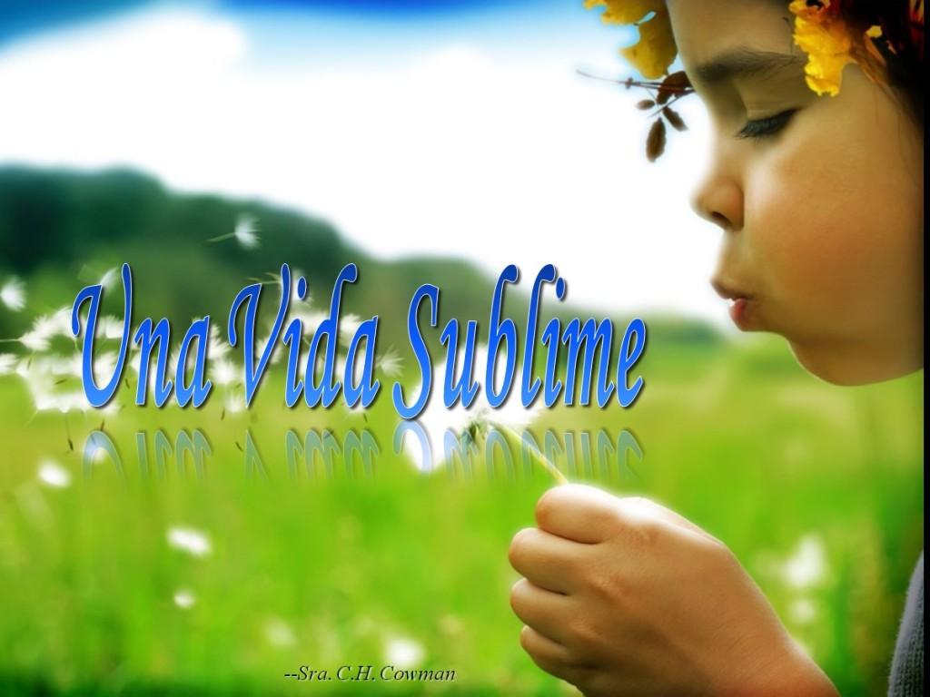 Una vida sublime [A Beautiful Life]
