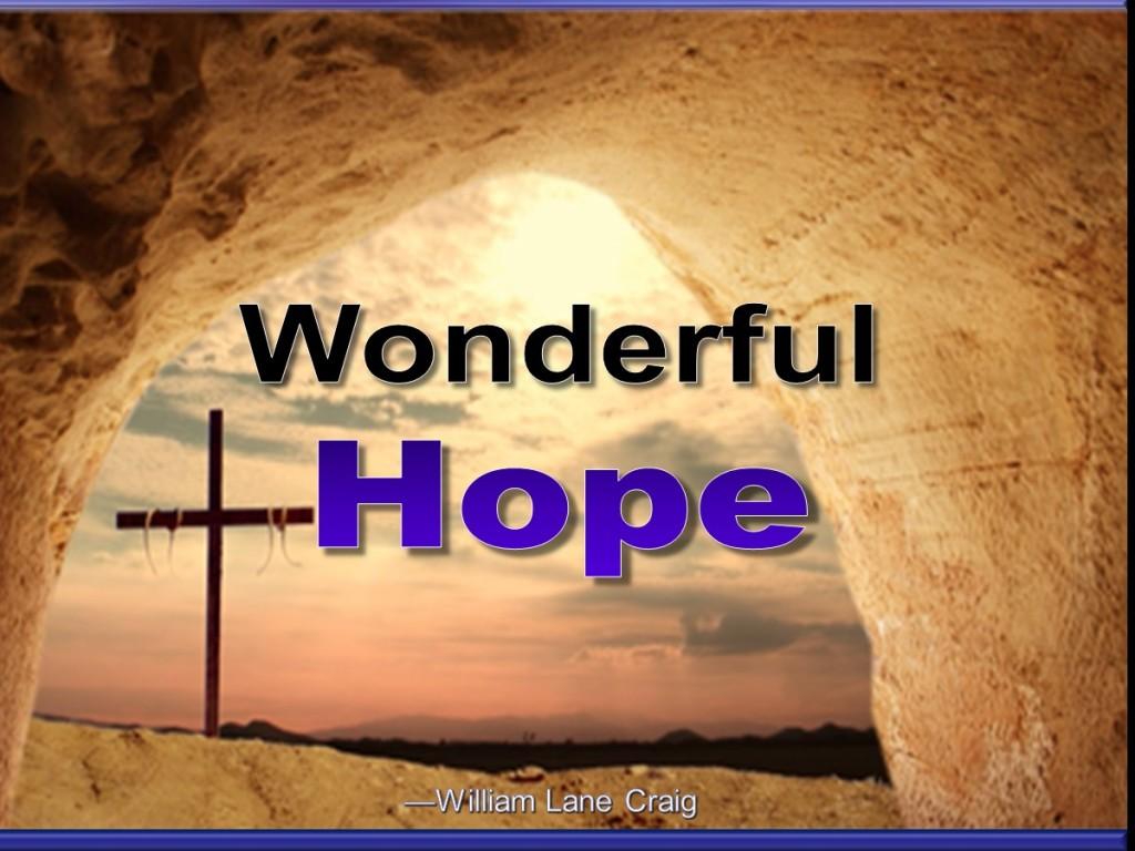 Wonderful Hope