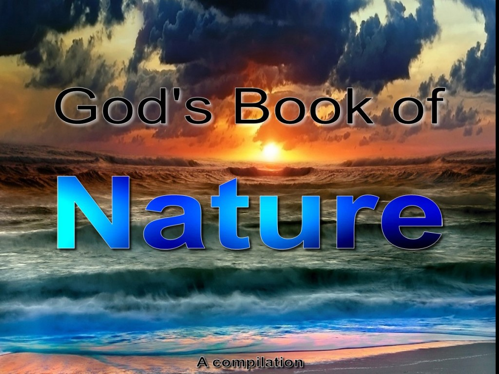 God's Book of Nature