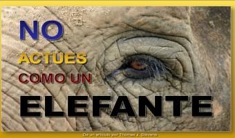 No actúes como un elefante