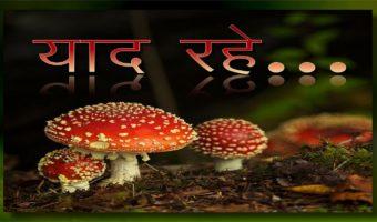 Remember This… : Hindi