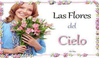 La flores del Cielo