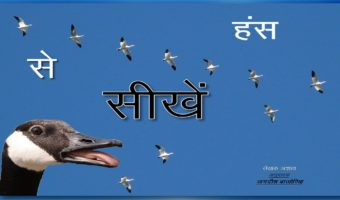 A Lesson from Geese: Hindi