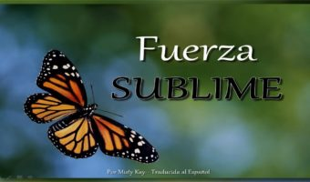 Fuerza sublime