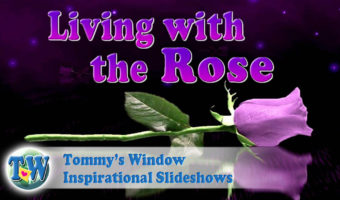 dc00d252f13d Prayer Archives – Tommy s Window