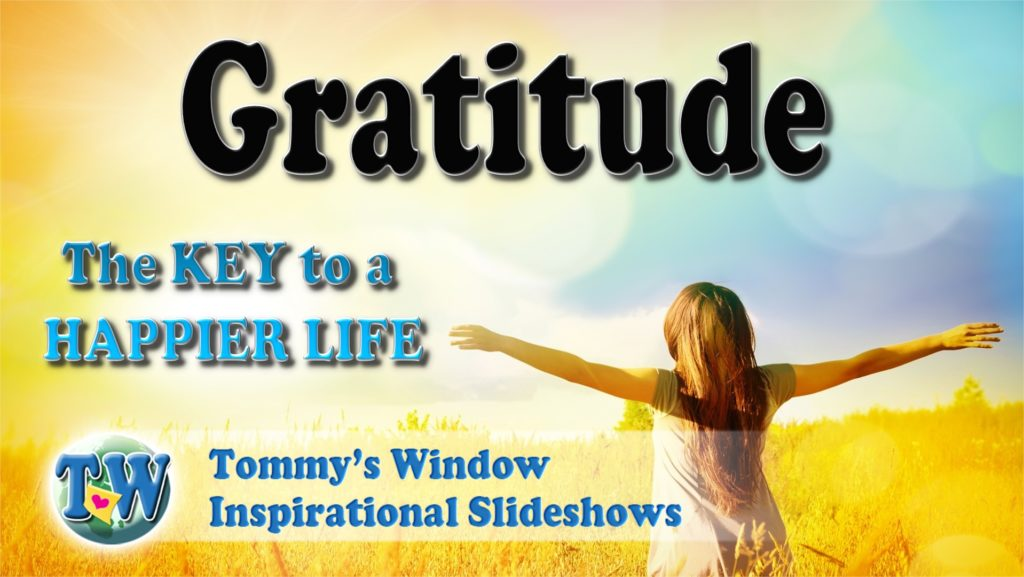 21206a2ee570 Gratitude The Key to a Happier Life – Tommy s Window Gratitude The ...