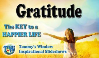 Gratitude The Key to a Happier Life