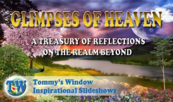 288939eb3eee Grief Comfort Archives – Tommy s Window