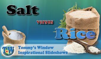 Salt vs Rice