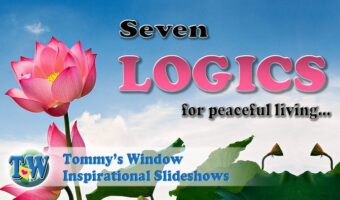 Seven Logics for Peaceful Living