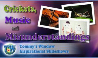 Crickets, Music and Misunderstandings