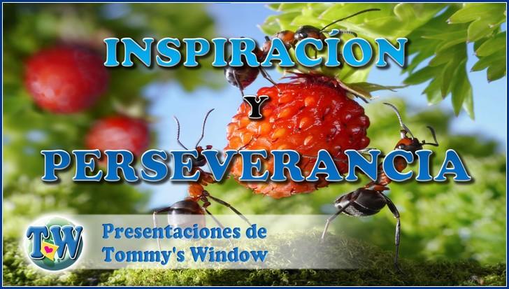 Inspiración y perseverancia